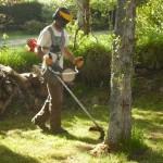 finition -tonte-pelouse